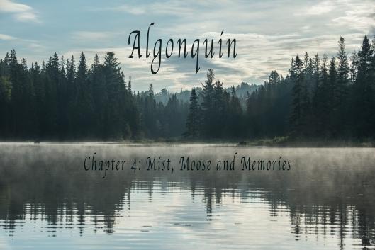 Algonquin-28
