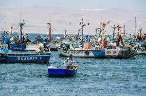 Peru-2015-5035o