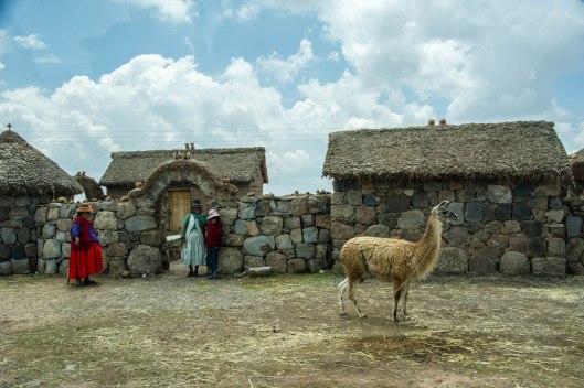 Peru-2015-5448o