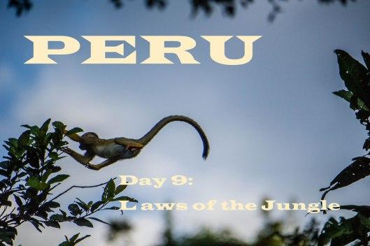 Peru-2015-6240-Edito