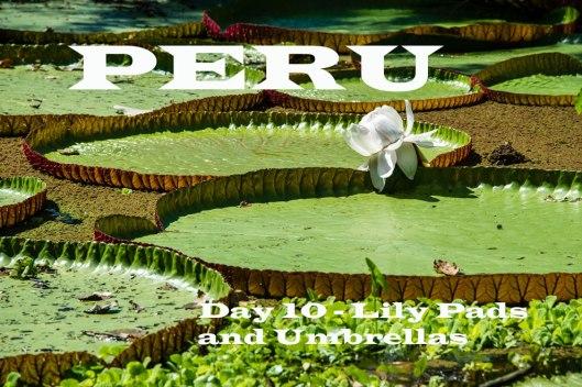 Peru-2015-6513o-Edit