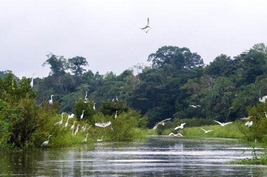 Peru-2015-8196o